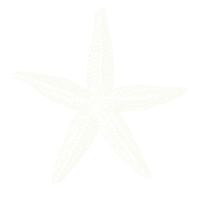 les-toiles-de-mer-chambres-dhotes-locmariaquer-étoilesdemer-4